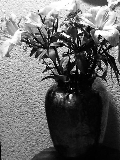 Flores en segundo plano