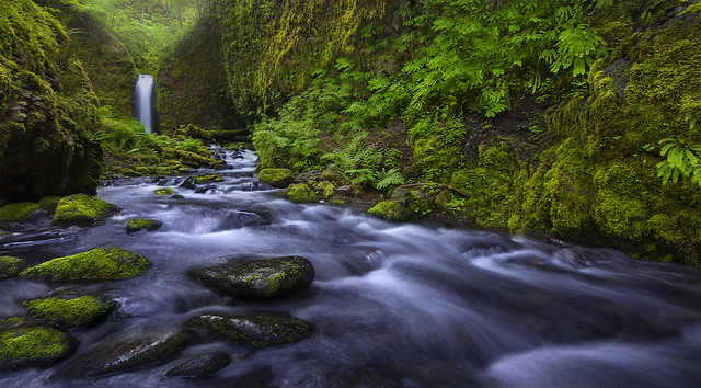Mossy Grotto Falls (Columbia Gorge, OR)