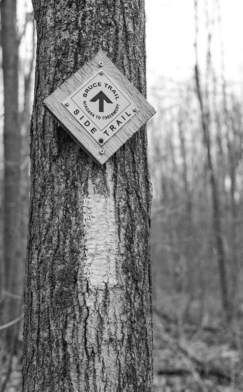 Bruce Trail Tag