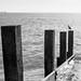Milford on sea break water20171030-2070