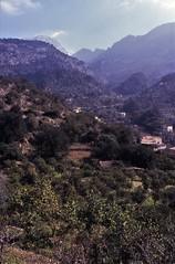 Mallorca FebMar 2004