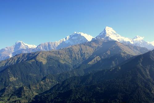 J19 : 9 octobre 2017 : 13ème jour du trek : de Ghorepani (2880 m) à Chuile (2067 m) avec A/R à Poon Hill (3193 m)