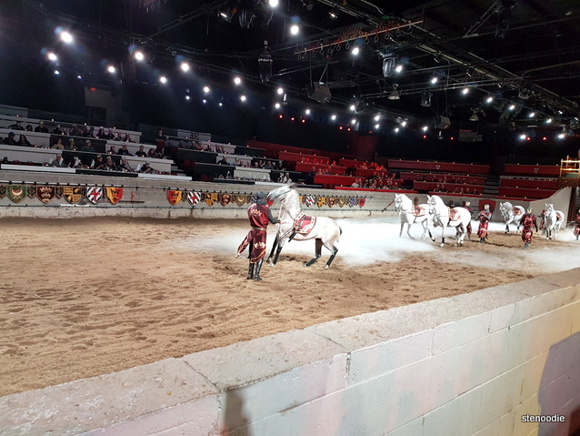 Medieval Times horses demonstration