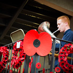 Remembrance Day 2017 (8 of 12)