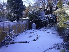 snow 008.jpg