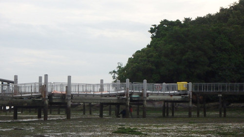 Oil spill booms laid out on Chek Jawa Boardwalk, 5 Nov 2017