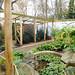 Aviary; Doves, jays, starlings, etc