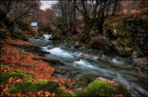 THE RIVER OF AUTUMN.