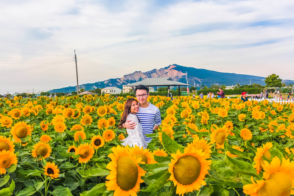 zhong-she-guan-guang-flower-market-alexisjetsets-10