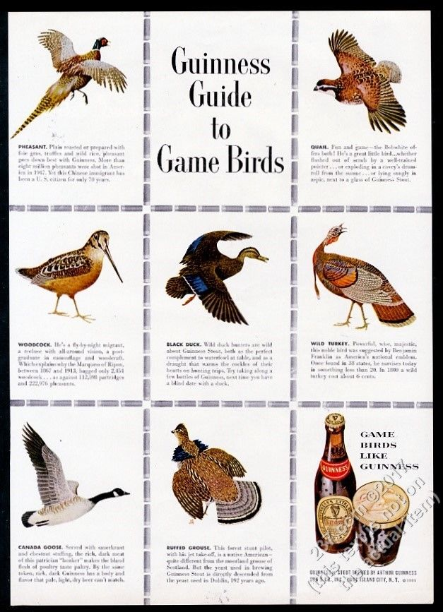 Guinness-1951-guide-to-more-game-birds