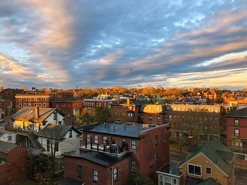 portland maine portlandmaine november fall autumn city sunrise birds
