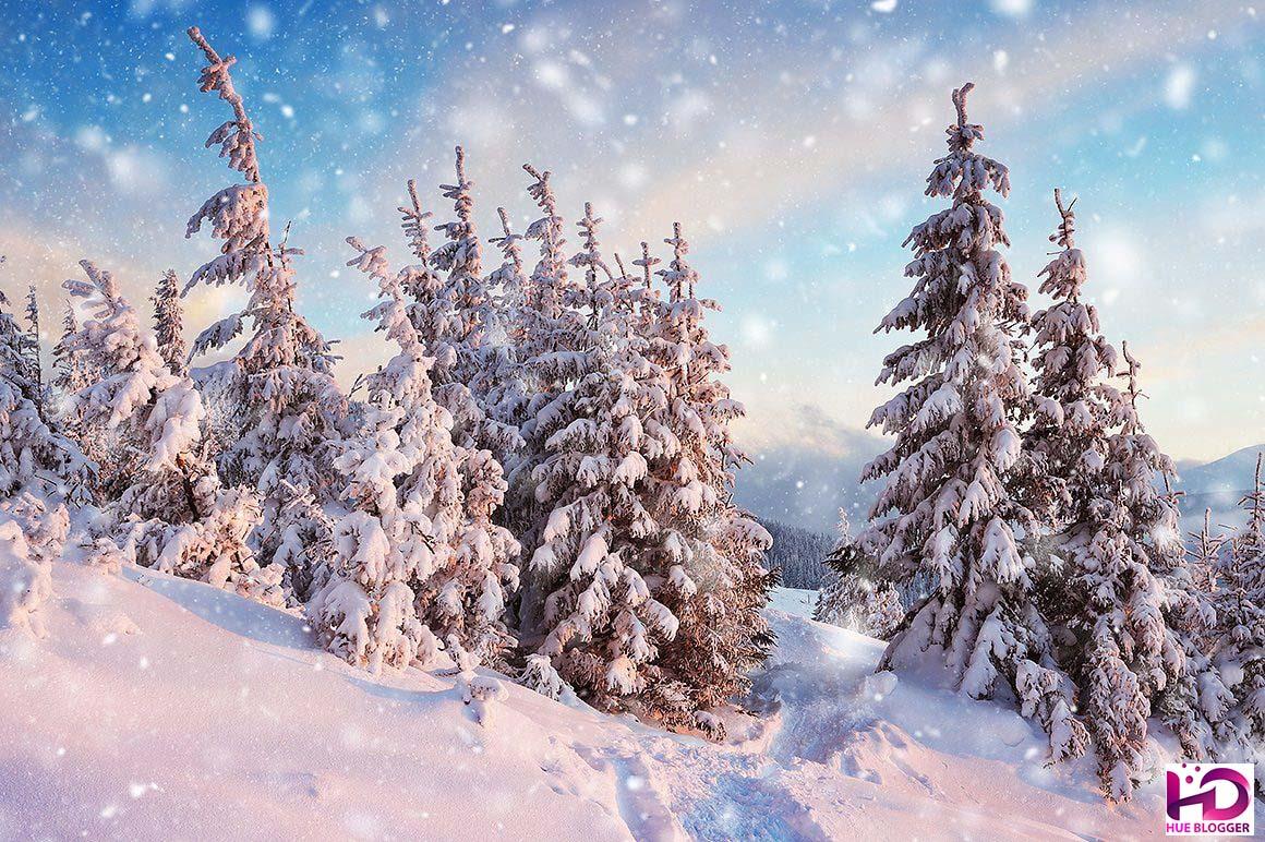 Hiệu ứng tuyết rơi mùa đông tuyệt vời