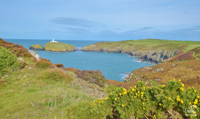 Pwll Deri to Strumble Head lighthouse walk on the Pembrokeshire Coast