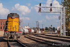 UP 1446 | EMD GP40-2 | UP Memphis Subdivision