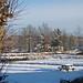 Fuji E510 DSCF6714_edited-2