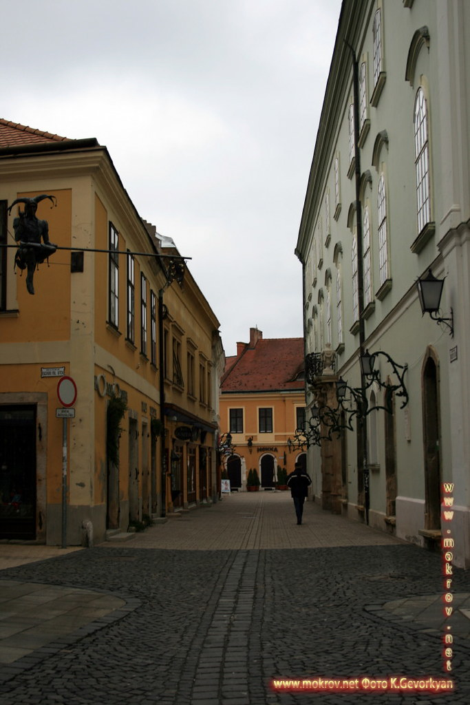 Секешфехервар — город в Венгрии с фотоаппаратом прогулки туристов