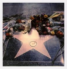 Selena's Star