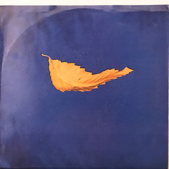 NEW ORDER:TRUE FAITH(JACKET A)