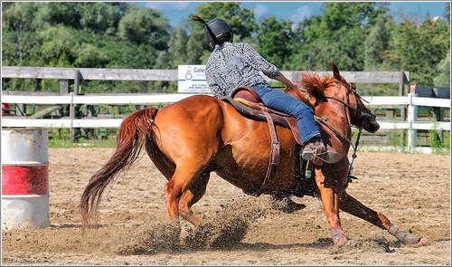 canon eos 70d 70200mm ef70200f4l barrelracing horses horse sport psp2018 paintshoppro2018 efex topaz paris fair ontario canada