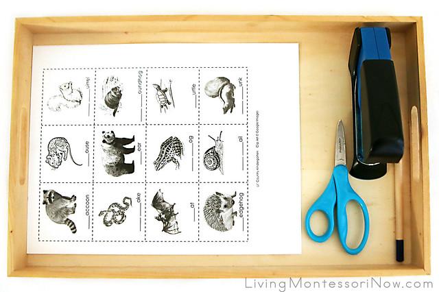 Tray for Making an Animals That Hibernate Mini-Book