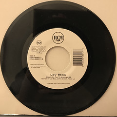 LOU BEGA:MAMBO NO.5(RECORD SIDE-B)
