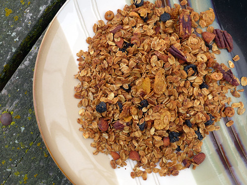 2017-11-12 - Blueberry Granola - 0005 [flickr]