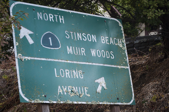 Highway 1 to Muir Woods