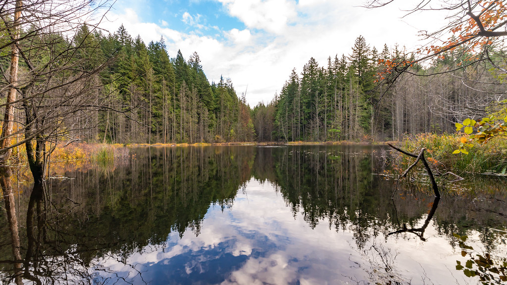 Whyte Lake reflections