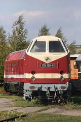 Baureihen 219, 229 (DR 119)