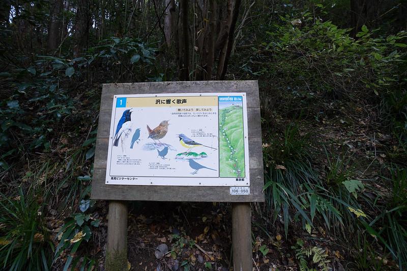 20171119_高尾山_0046.jpg