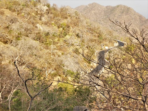 i-jodhpur-mount abu-route  (47)