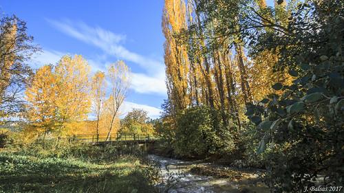 [0245] Río Taibilla en la zona de Nerpio.