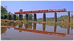 The Bridge on River Ambika
