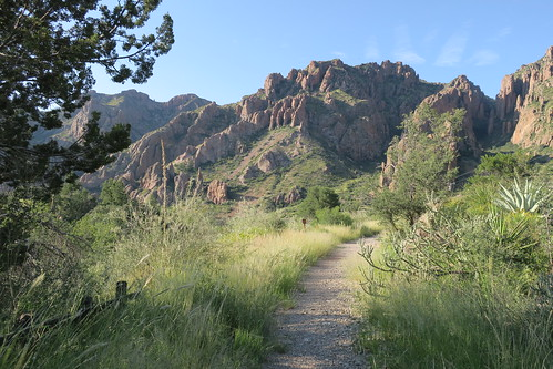 Window Trail from Chisos Basin Campground