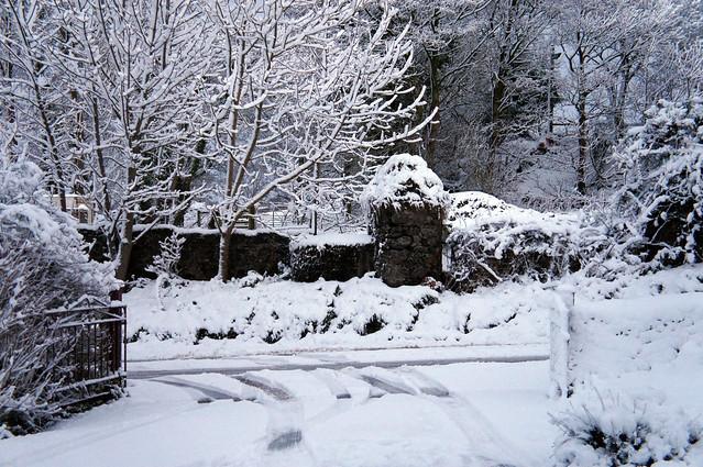 First Snow of Winter, Sony NEX-C3, E 18-55mm F3.5-5.6 OSS