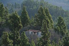 La Casa del Pinar
