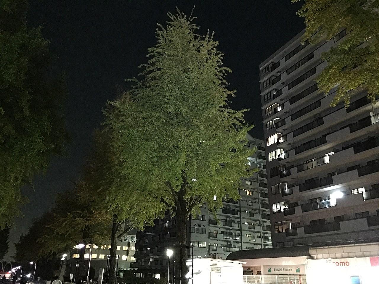 20171101_光が丘 (1)