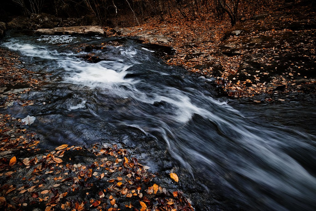 秋の渓流 #3