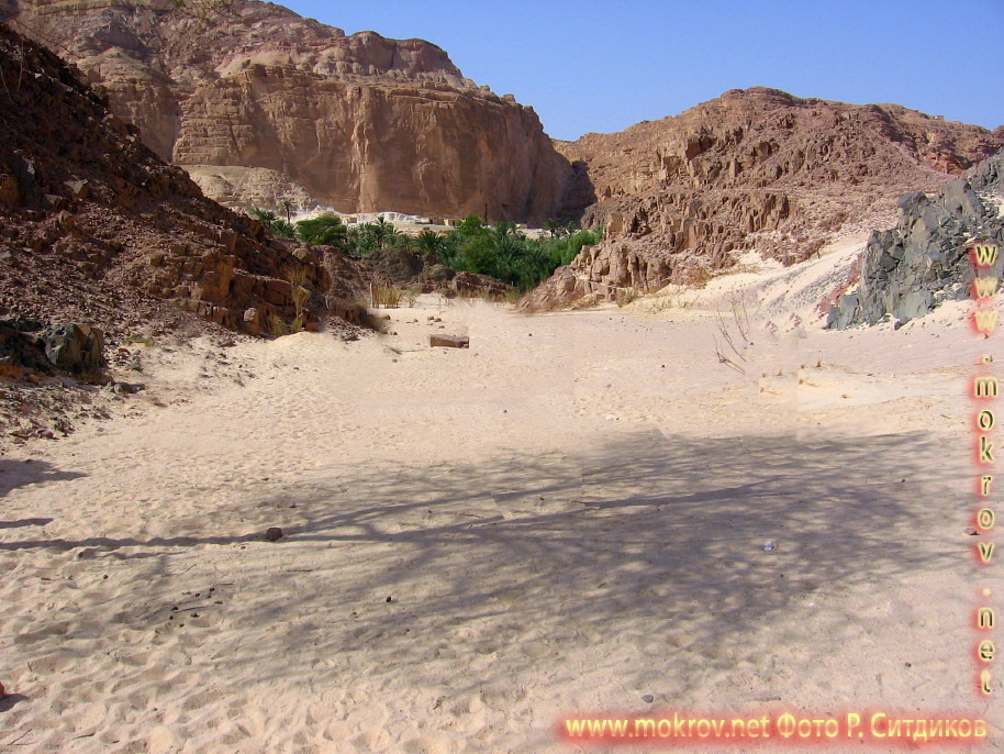Синайская пустыня пустыня, белый каньон фото