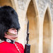 The Queens guardsman on duty at Windsor Castle, England