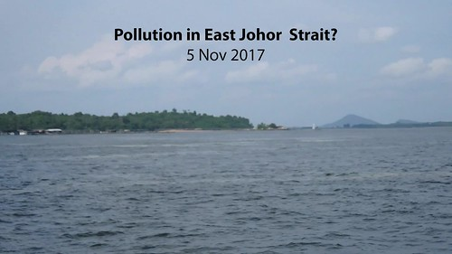 Pollution in the East Johor Strait?