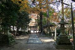 Photo:Worshippers' path (sando, 参道) to Hakusan Shrine (白山神社) By Greg Peterson in Japan