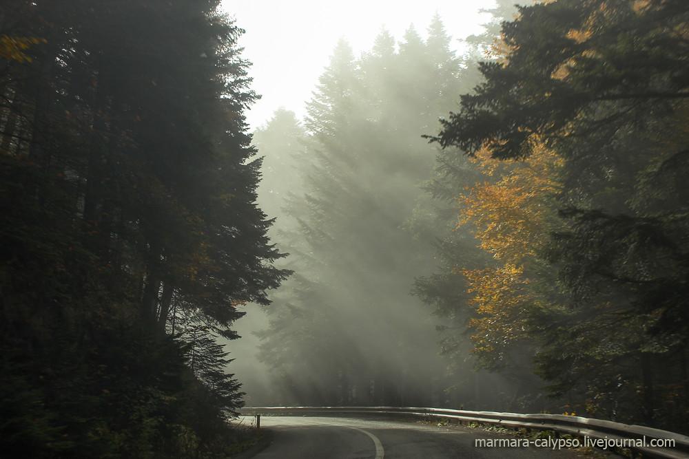 Bolu-nov2011-1476c