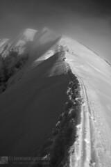 MONTI BOVE sud e nord, MONTE BICCO, in alpinistica (Sibillini)