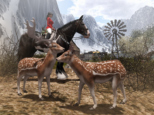 #SecondLifeChallenge - Animals in Second Life