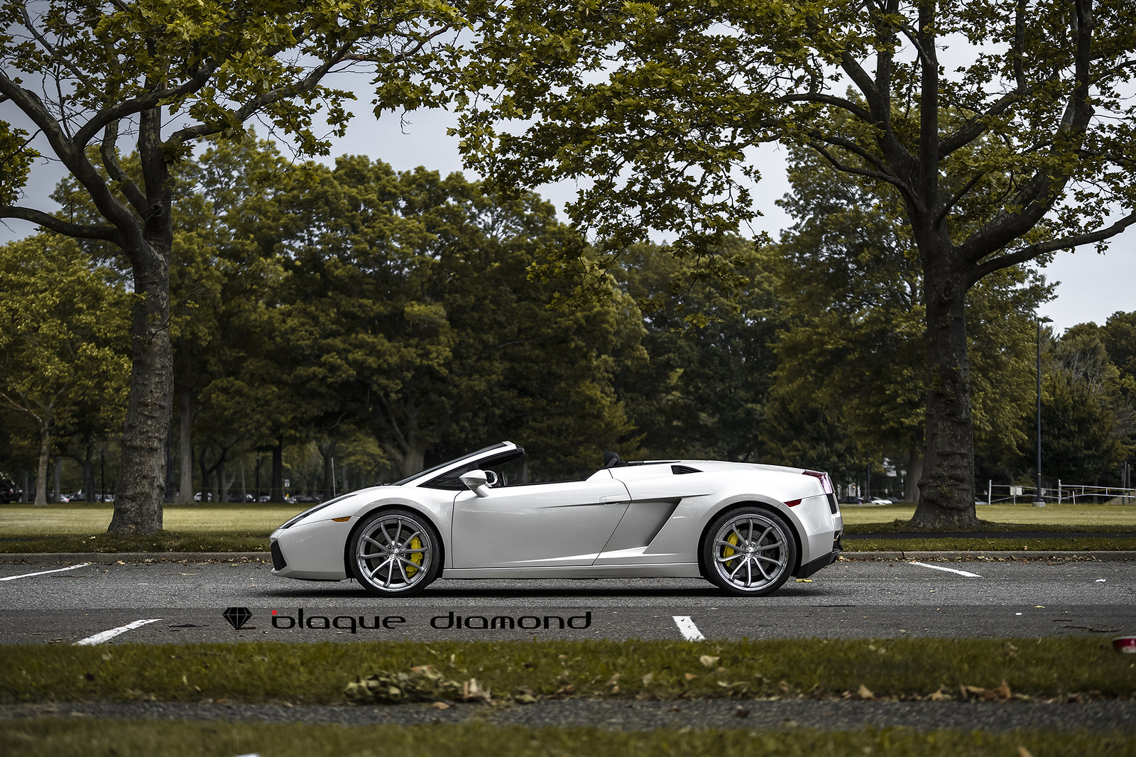 Lamborghini on Silver Silver w/Chrome SS Lip BD-23