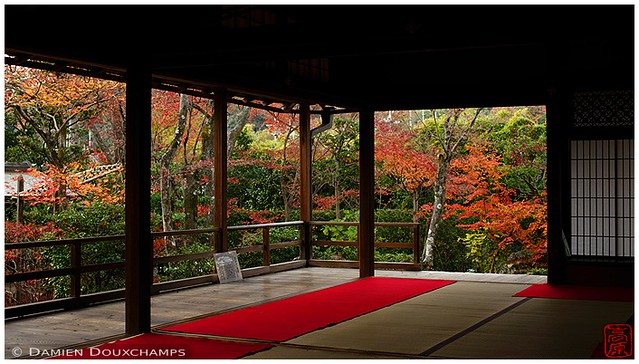 End of autumn, Diaho-in temple, Kyoto