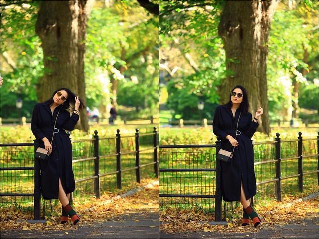 Central Park Tanvii.com