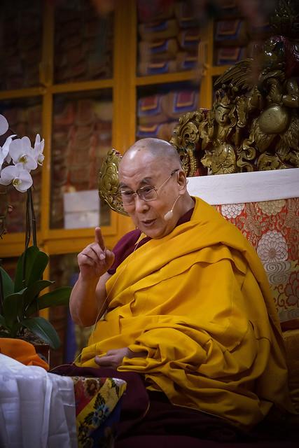 Header of Dalai