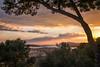 Toulon, sa rade by an avel